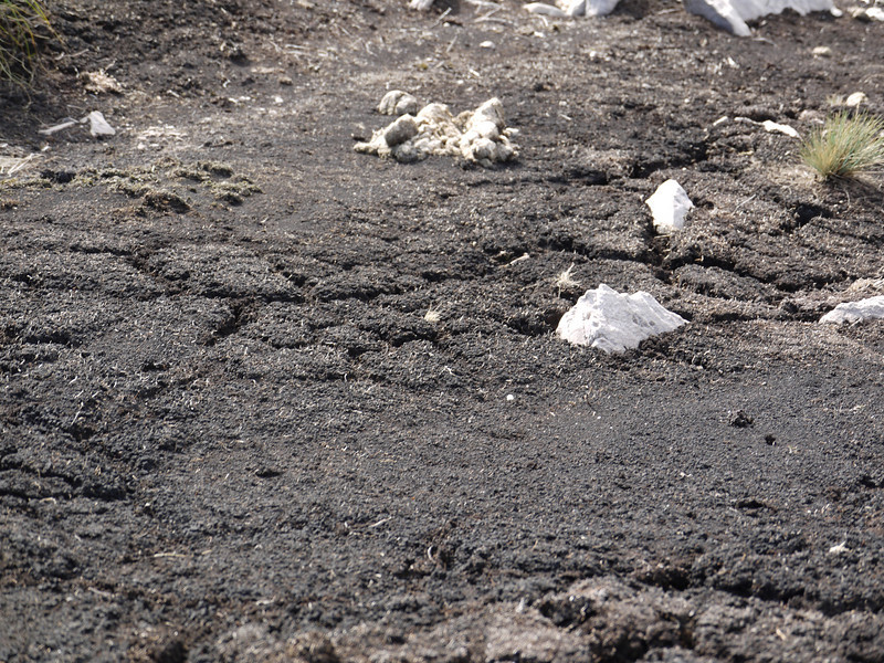 3855 - Mt Tumbledown - 2011-03-06 - P1100194