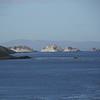 4095 - Carcass Island - 2011-03-07 - P1100411