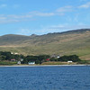 3914 - Carcass Island - 2011-03-07 - P1020326