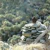 4337 - New Island - 2011-03-07 - P1020393