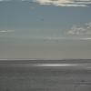 4301 - New Island - 2011-03-07 - P1100746