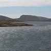 4119 - New Island - 2011-03-07 - P1100586