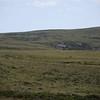 3848 - Mt Tumbledown - 2011-03-06 - P1100190