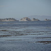 4094 - Carcass Island - 2011-03-07 - P1100284