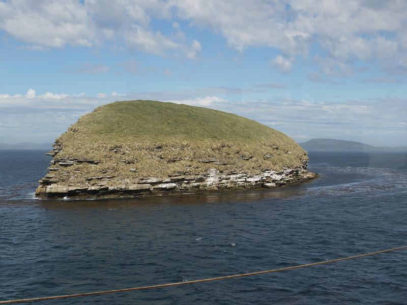 4386 - New Island - 2011-03-07 - P1100584