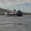 3911 - Carcass Island - 2011-03-07 - P1100261