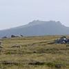 3888 - Mt Tumbledown - 2011-03-06 - P1100230