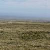 3887 - Mt Tumbledown - 2011-03-06 - P1100227