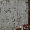 3908 - Mt Tumbledown - 2011-03-06 - P1100245