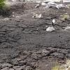 3854 - Mt Tumbledown - 2011-03-06 - P1100193