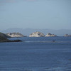 4095---Carcass-Island---2011-03-07---P1100411