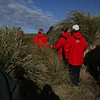 3955---Carcass-Island---2011-03-07---P1100276