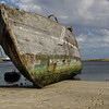 4124---New-Island---2011-03-07---P1100880
