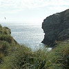 4150---New-Island---2011-03-07---P1020390