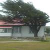 3785---Stanley---2011-03-06---P1020274