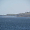 3912---Carcass-Island---2011-03-07---P1100581