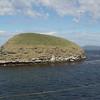 4386---New-Island---2011-03-07---P1100584