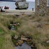 4121---New-Island---2011-03-07---P1100872