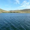 3913---Carcass-Island---2011-03-07---P1020327
