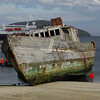 4123---New-Island---2011-03-07---P1100877