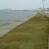 3774---Stanley---2011-03-06---P1020272