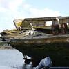 4126---New-Island---2011-03-07---P1100881
