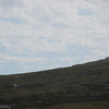 3849---Mt-Tumbledown---2011-03-06---P1100188