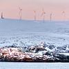 0082 - 2013-02 Norway - F - DSCDSC0283400069