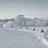 0004 - 2013-02 Norway - D - P1030665