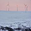 0084 - 2013-02 Norway - F - DSCDSC0282900064