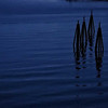 0905---2013-02-Norway---F---DSCDSC0396901204-
