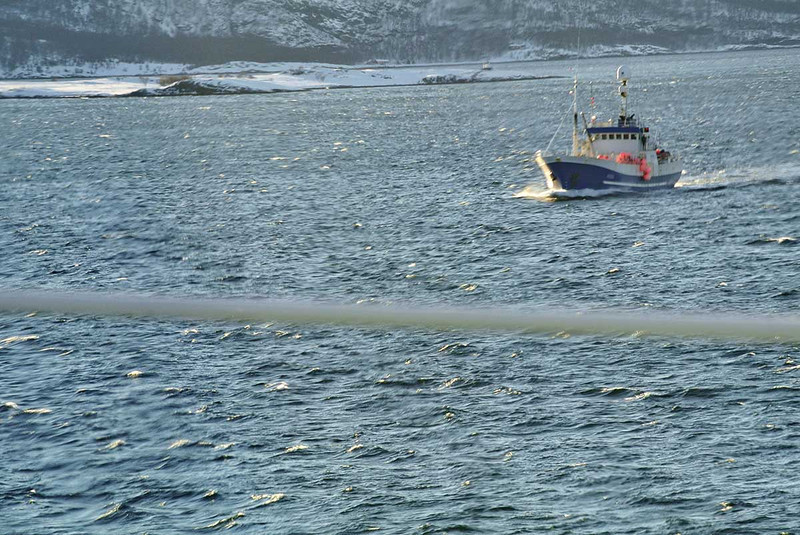 0811---2013-02-Norway---S---DSC_0824-