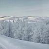 0005---2013-02-Norway---D---P1030666-