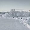 0004---2013-02-Norway---D---P1030665-