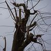 018 - 2013-04-12 - Vitra -DSC05120