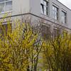 015 - 2013-04-12 - Vitra -DSC05117
