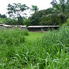 Typical farmstead in rural Gabon.