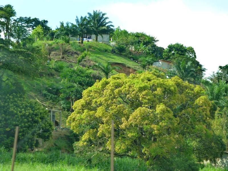 Verdant hills in rural Gabon.