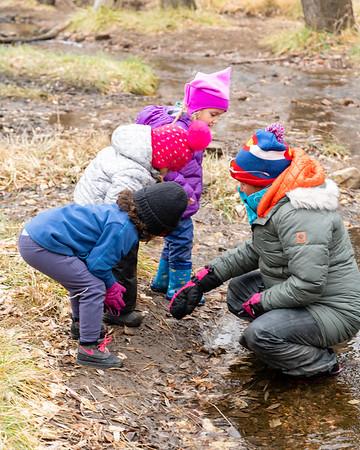 World Mind Nature Immersion School   Forest School Program