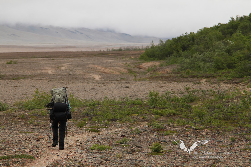 August 2011. Me, hiking in the Valley of 10,000 Smokes.