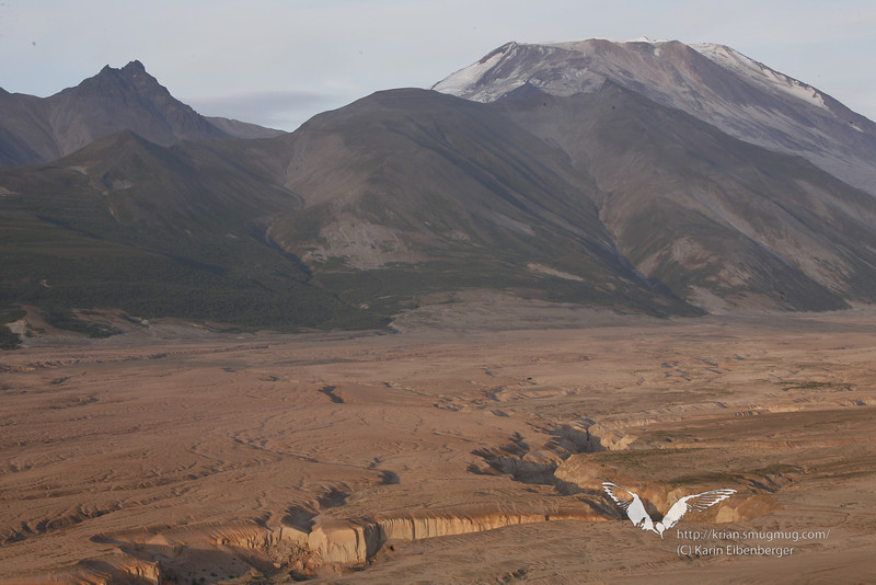 August 2011. Valley of 10,000 Smokes, Katmai National Park.