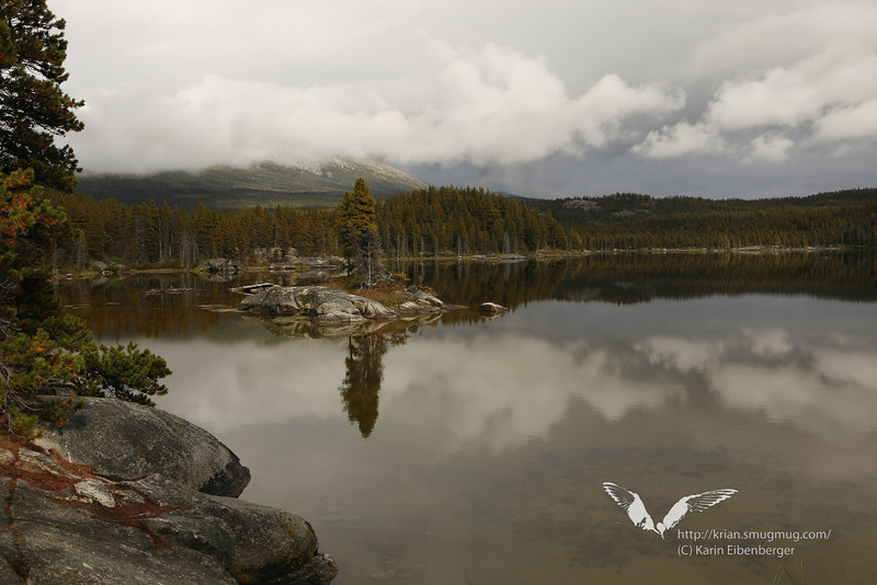 August 2011. Hiking the 33 Mile Chilkoot Trail.