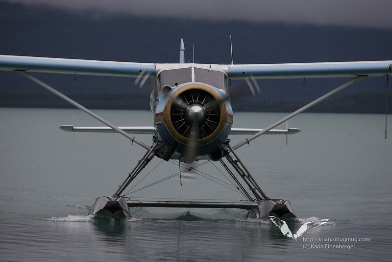 August 2011. Flight from Anchorage to King Salmon to Brooks Camp, Katmai National Park.
