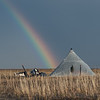 Coastal Plain Rainbow