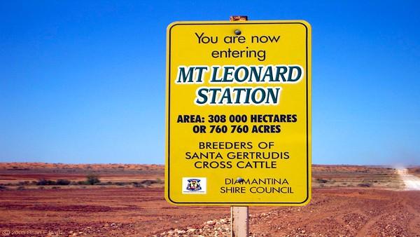 Mt Leonard. Huge.