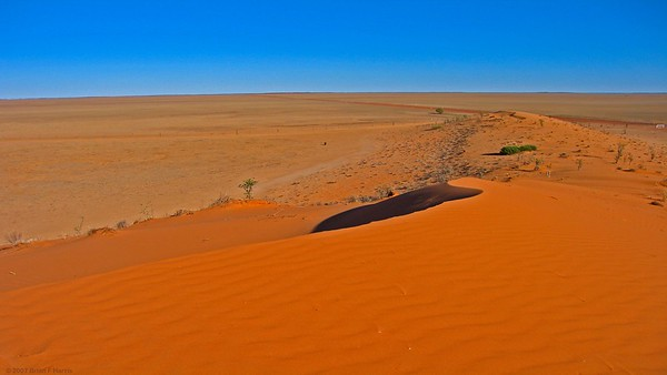 One of the first sand hills I came across after Windorah. Just a huge treeless expanse.