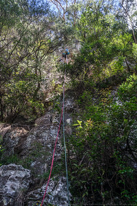 Descending through trees on the third abseil (27m).