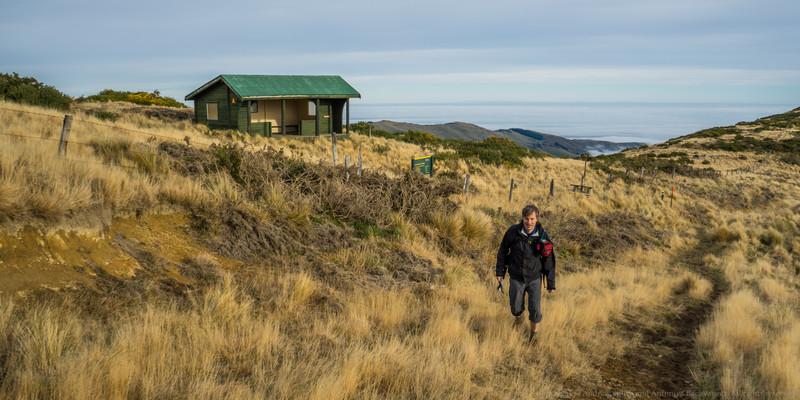 The Mt Herbert shelter.