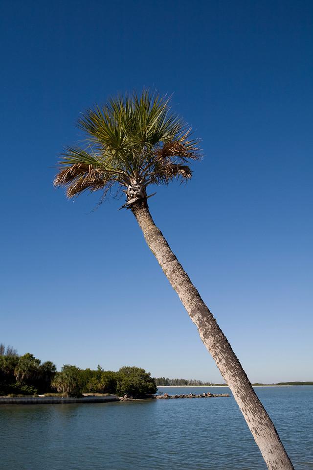 Florida_200712