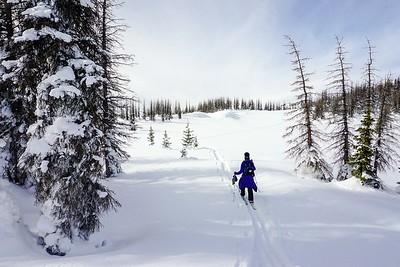 Wolf Creek Pass, Colorado, USA